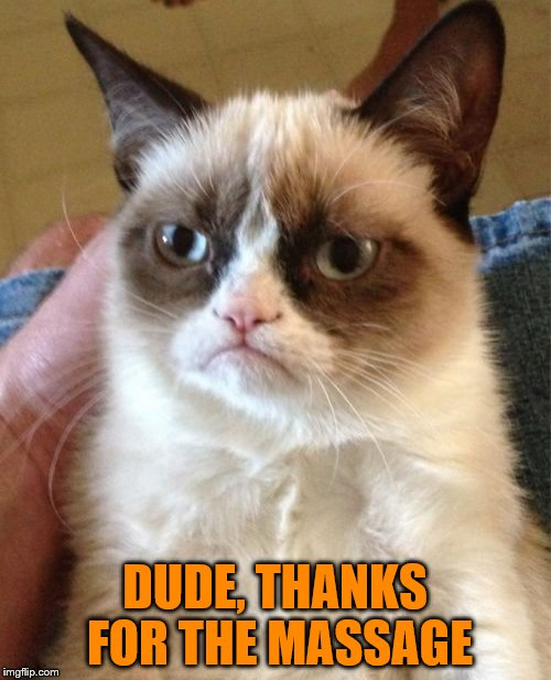 Grumpy Cat Meme | DUDE, THANKS FOR THE MASSAGE | image tagged in memes,grumpy cat | made w/ Imgflip meme maker