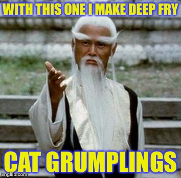 WITH THIS ONE I MAKE DEEP FRY CAT GRUMPLINGS | made w/ Imgflip meme maker
