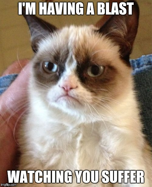 Grumpy Cat Meme | I'M HAVING A BLAST WATCHING YOU SUFFER | image tagged in memes,grumpy cat | made w/ Imgflip meme maker