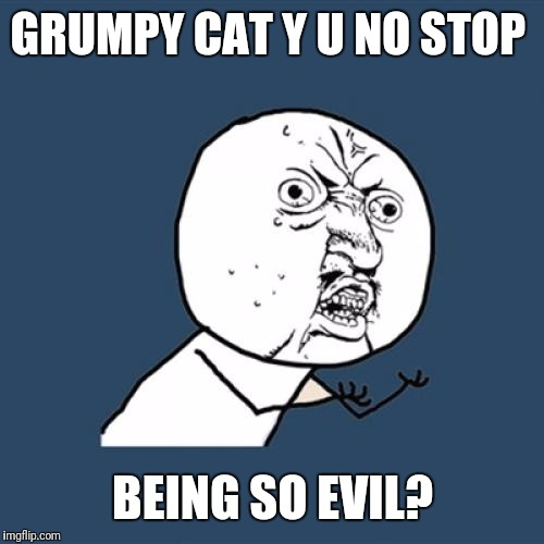 Y U No Meme | GRUMPY CAT Y U NO STOP BEING SO EVIL? | image tagged in memes,y u no | made w/ Imgflip meme maker