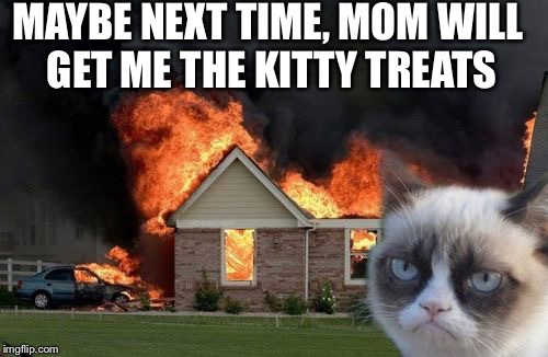Burn Kitty Meme | MAYBE NEXT TIME, MOM WILL GET ME THE KITTY TREATS | image tagged in memes,burn kitty,grumpy cat | made w/ Imgflip meme maker