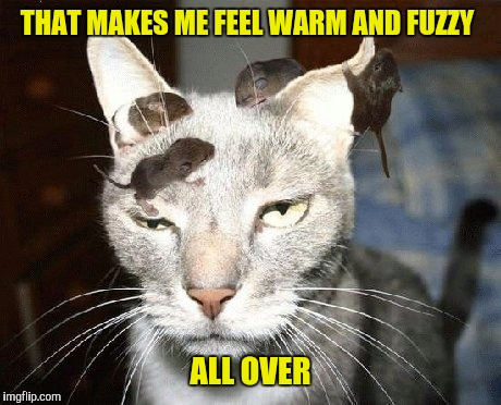 THAT MAKES ME FEEL WARM AND FUZZY ALL OVER | made w/ Imgflip meme maker
