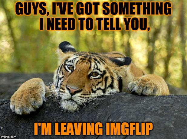 Well done for reading the title, because now you know what I said in the meme is a lie :) | GUYS, I'VE GOT SOMETHING I NEED TO TELL YOU, I'M LEAVING IMGFLIP | image tagged in confession tiger,leaving,goodbye | made w/ Imgflip meme maker
