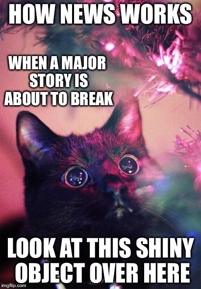 Sheeple news | HOW NEWS WORKS LOOK AT THIS SHINY OBJECT OVER HERE WHEN A MAJOR STORY IS ABOUT TO BREAK | image tagged in christmas cat | made w/ Imgflip meme maker