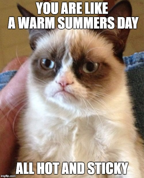 Grumpy Cat Meme | YOU ARE LIKE A WARM SUMMERS DAY ALL HOT AND STICKY | image tagged in memes,grumpy cat | made w/ Imgflip meme maker
