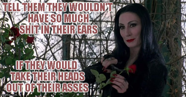Addams Family | TELL THEM THEY WOULDN'T HAVE SO MUCH SHIT IN THEIR EARS IF THEY WOULD TAKE THEIR HEADS OUT OF THEIR ASSES | image tagged in addams family | made w/ Imgflip meme maker