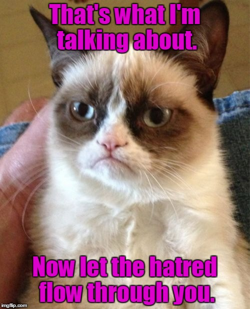 Grumpy Cat Meme | That's what I'm talking about. Now let the hatred flow through you. | image tagged in memes,grumpy cat | made w/ Imgflip meme maker