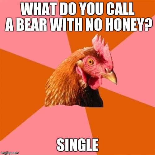Anti Joke Chicken Meme | WHAT DO YOU CALL A BEAR WITH NO HONEY? SINGLE | image tagged in memes,anti joke chicken | made w/ Imgflip meme maker