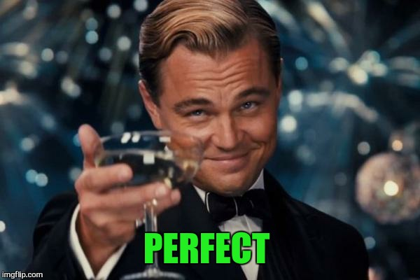 Leonardo Dicaprio Cheers Meme | PERFECT | image tagged in memes,leonardo dicaprio cheers | made w/ Imgflip meme maker