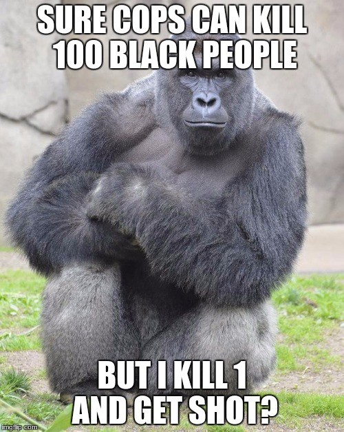 Harambe | SURE COPS CAN KILL 100 BLACK PEOPLE BUT I KILL 1 AND GET SHOT? | image tagged in harambe | made w/ Imgflip meme maker