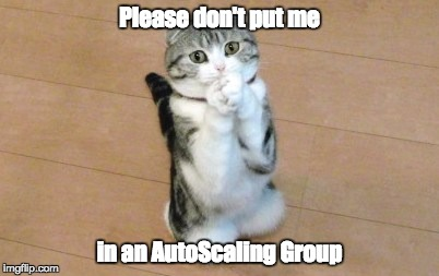 Please don't put me in an AutoScaling Group | made w/ Imgflip meme maker