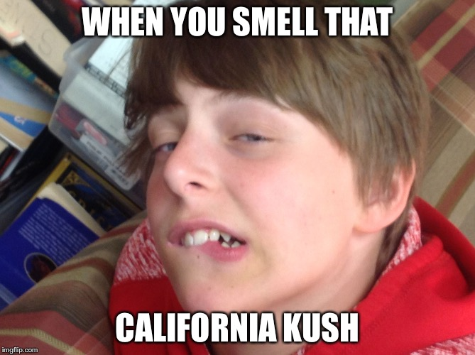 Dylan the dank | WHEN YOU SMELL THAT CALIFORNIA KUSH | image tagged in dylan the dank | made w/ Imgflip meme maker