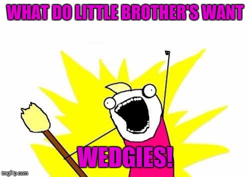 X All The Y Meme | WHAT DO LITTLE BROTHER'S WANT WEDGIES! | image tagged in memes,x all the y | made w/ Imgflip meme maker