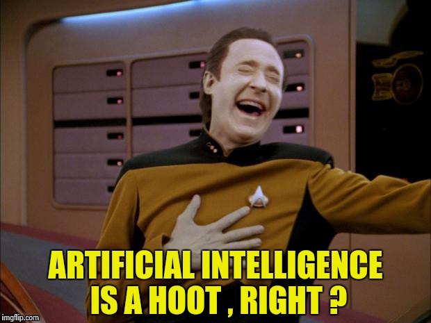 Data likes it | ARTIFICIAL INTELLIGENCE IS A HOOT , RIGHT ? | image tagged in data likes it | made w/ Imgflip meme maker