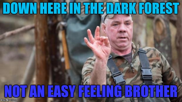 With the AIMS team down in the most evil place of the appalachian mountain ranges, Has me worried for some of them  | DOWN HERE IN THE DARK FOREST NOT AN EASY FEELING BROTHER | image tagged in wild bill mountain monsters | made w/ Imgflip meme maker