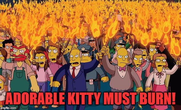 mob | ADORABLE KITTY MUST BURN! | image tagged in mob | made w/ Imgflip meme maker