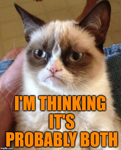 Grumpy Cat Meme | I'M THINKING IT'S PROBABLY BOTH | image tagged in memes,grumpy cat | made w/ Imgflip meme maker