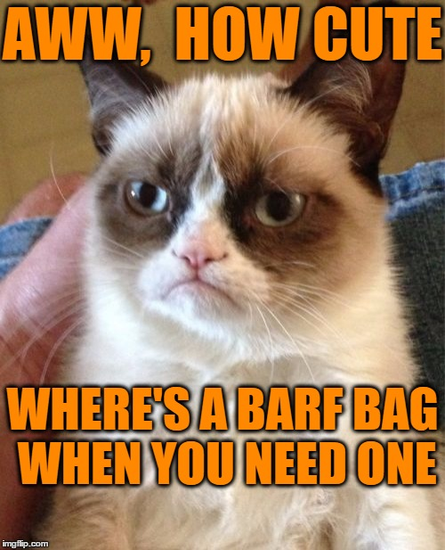 Grumpy Cat Meme | AWW,  HOW CUTE WHERE'S A BARF BAG WHEN YOU NEED ONE | image tagged in memes,grumpy cat | made w/ Imgflip meme maker