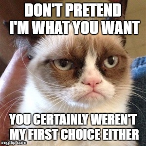 That time you wanted a puppy... and they wanted a different owner. | DON'T PRETEND I'M WHAT YOU WANT YOU CERTAINLY WEREN'T MY FIRST CHOICE EITHER | image tagged in unhappy birthday,grumpy cat,trump birthday meme,unhappy people,sad cat,funny | made w/ Imgflip meme maker