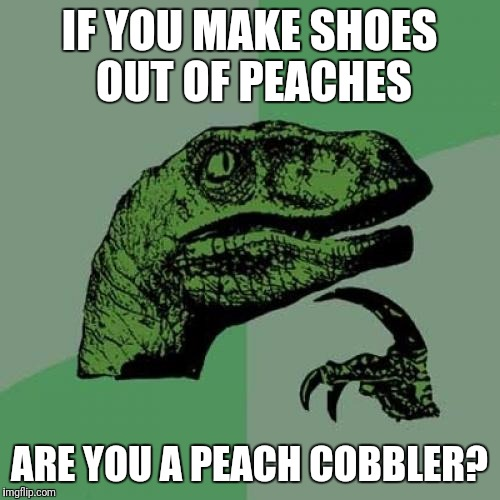 Philosoraptor Meme | IF YOU MAKE SHOES OUT OF PEACHES ARE YOU A PEACH COBBLER? | image tagged in memes,philosoraptor | made w/ Imgflip meme maker