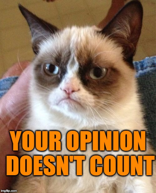 Grumpy Cat Meme | YOUR OPINION DOESN'T COUNT | image tagged in memes,grumpy cat | made w/ Imgflip meme maker
