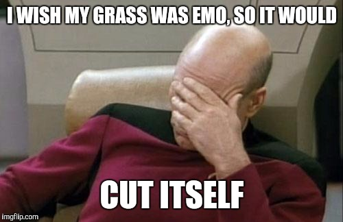 Captain Picard Facepalm Meme | I WISH MY GRASS WAS EMO, SO IT WOULD CUT ITSELF | image tagged in memes,captain picard facepalm | made w/ Imgflip meme maker
