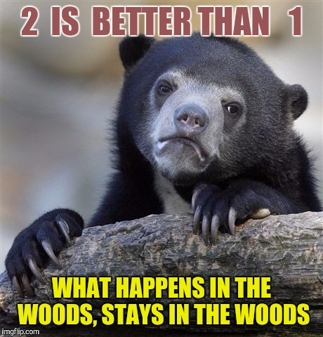 Confession Bear Meme | 2  IS  BETTER THAN   1 WHAT HAPPENS IN THE WOODS, STAYS IN THE WOODS | image tagged in memes,confession bear | made w/ Imgflip meme maker
