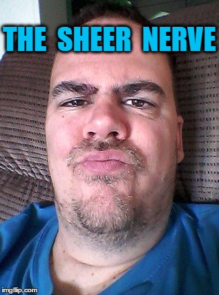 Scowl | THE  SHEER  NERVE | image tagged in scowl | made w/ Imgflip meme maker