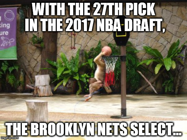 New Nets NBA Player | WITH THE 27TH PICK IN THE 2017 NBA DRAFT, THE BROOKLYN NETS SELECT... | image tagged in nba,brooklyn nets,basketball | made w/ Imgflip meme maker