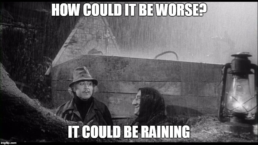 Could be worse | HOW COULD IT BE WORSE? IT COULD BE RAINING | image tagged in could be worse | made w/ Imgflip meme maker