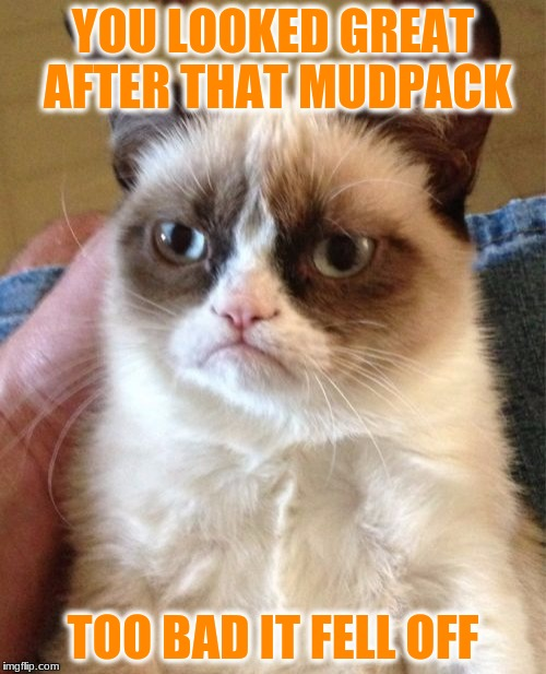 Grumpy Cat Meme | YOU LOOKED GREAT AFTER THAT MUDPACK TOO BAD IT FELL OFF | image tagged in memes,grumpy cat | made w/ Imgflip meme maker