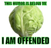 Sprout Wisdom | THIS HUMOR IS BELOW ME I AM OFFENDED | image tagged in sprout wisdom | made w/ Imgflip meme maker