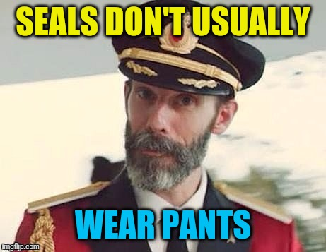 Captain Obvious | SEALS DON'T USUALLY WEAR PANTS | image tagged in captain obvious | made w/ Imgflip meme maker
