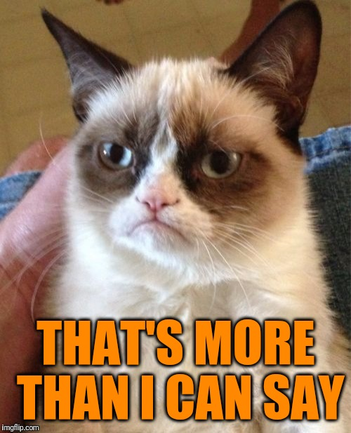 Grumpy Cat Meme | THAT'S MORE THAN I CAN SAY | image tagged in memes,grumpy cat | made w/ Imgflip meme maker