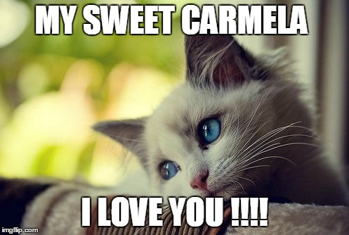 First World Problems Cat |  MY SWEET CARMELA; I LOVE YOU !!!! | image tagged in memes,first world problems cat | made w/ Imgflip meme maker