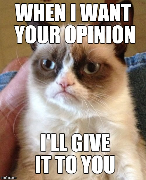 Grumpy Cat Meme | WHEN I WANT YOUR OPINION I'LL GIVE IT TO YOU | image tagged in memes,grumpy cat | made w/ Imgflip meme maker