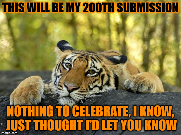 I think I can confirm now that I probably have no life, but who cares? | THIS WILL BE MY 200TH SUBMISSION NOTHING TO CELEBRATE, I KNOW, JUST THOUGHT I'D LET YOU KNOW | image tagged in confession tiger,submissions,200th submission | made w/ Imgflip meme maker