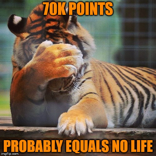 Oh who cares about my real life - this one might just be better . . . | 70K POINTS PROBABLY EQUALS NO LIFE | image tagged in facepalm tiger,help me | made w/ Imgflip meme maker
