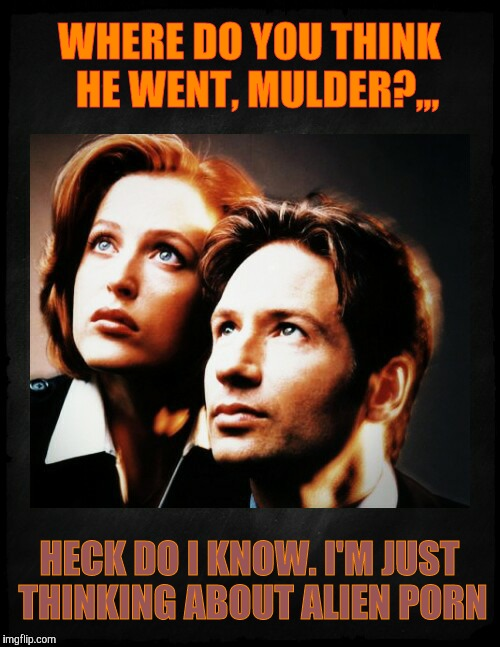 Mulder and Scully gaze to whatever,,, | WHERE DO YOU THINK  HE WENT, MULDER?,,, HECK DO I KNOW. I'M JUST THINKING ABOUT ALIEN PORN | image tagged in mulder and scully gaze to whatever   | made w/ Imgflip meme maker