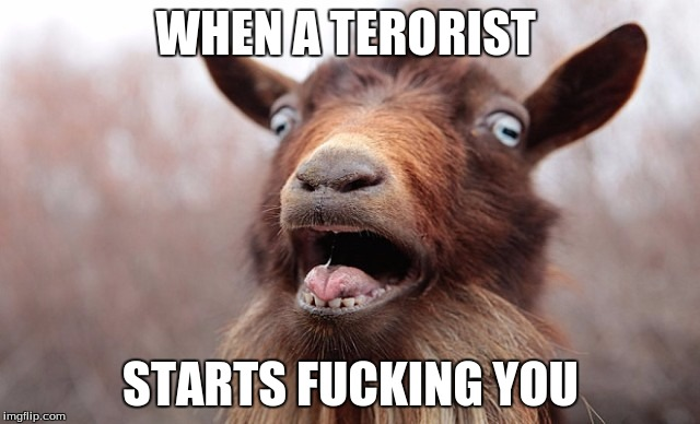 WHEN A TERORIST STARTS F**KING YOU | image tagged in goat | made w/ Imgflip meme maker