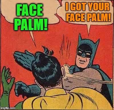 Batman Slapping Robin Meme | FACE PALM! I GOT YOUR FACE PALM! | image tagged in memes,batman slapping robin | made w/ Imgflip meme maker