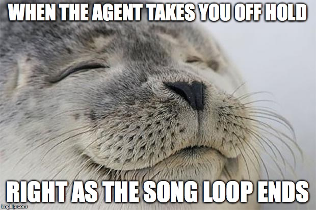 Satisfied Seal Meme | WHEN THE AGENT TAKES YOU OFF HOLD RIGHT AS THE SONG LOOP ENDS | image tagged in memes,satisfied seal | made w/ Imgflip meme maker
