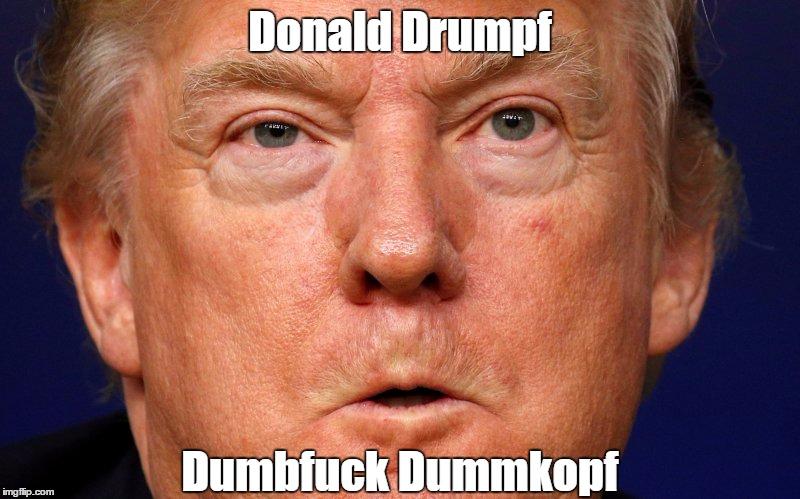 Donald Drumpf | Donald Drumpf Dumbf**k Dummkopf | image tagged in devious donald,despicable donald,deplorable donald,dishonorable donald | made w/ Imgflip meme maker