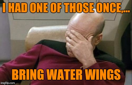 Captain Picard Facepalm Meme | I HAD ONE OF THOSE ONCE,... BRING WATER WINGS | image tagged in memes,captain picard facepalm | made w/ Imgflip meme maker