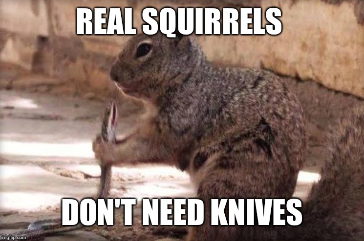 REAL SQUIRRELS DON'T NEED KNIVES | made w/ Imgflip meme maker