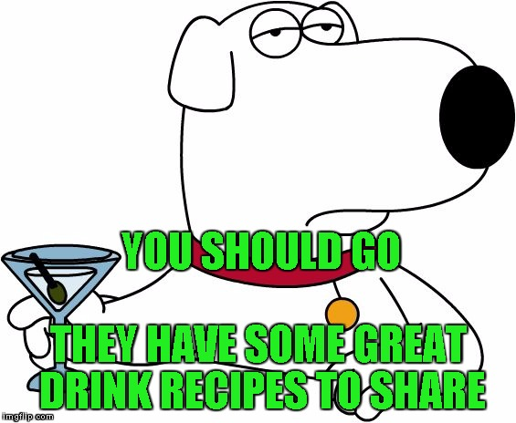 Family Guy Brian | YOU SHOULD GO THEY HAVE SOME GREAT DRINK RECIPES TO SHARE | image tagged in family guy brian | made w/ Imgflip meme maker