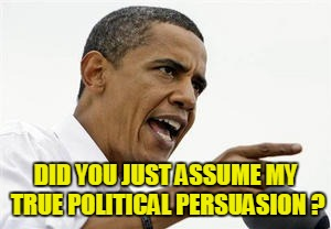 DID YOU JUST ASSUME MY TRUE POLITICAL PERSUASION ? | made w/ Imgflip meme maker