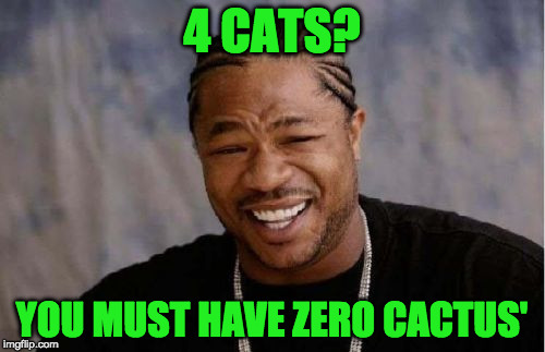 Yo Dawg Heard You Meme | 4 CATS? YOU MUST HAVE ZERO CACTUS' | image tagged in memes,yo dawg heard you | made w/ Imgflip meme maker