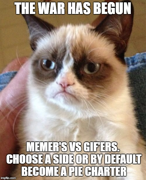 Grumpy Cat Meme | THE WAR HAS BEGUN MEMER'S VS GIF'ERS. CHOOSE A SIDE OR BY DEFAULT BECOME A PIE CHARTER | image tagged in memes,grumpy cat | made w/ Imgflip meme maker