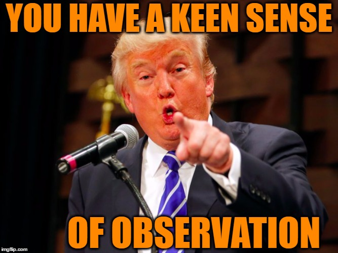 trump point | YOU HAVE A KEEN SENSE OF OBSERVATION | image tagged in trump point | made w/ Imgflip meme maker